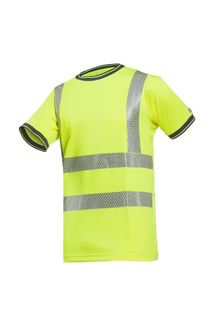Pulcini - T-shirts