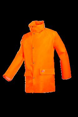 Dortmund - Orange